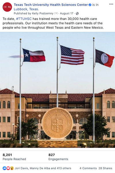 TTUHSC Flag Post